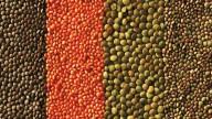 Capodanno con la ricetta delle girelle di lenticchie!