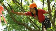 In forma con il Tree Climbing