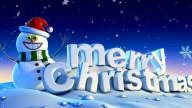 Buon Natale a tutti da Wellness Farm