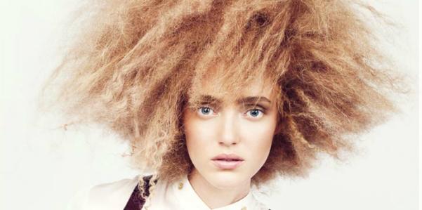 capelli-secchi-crespi_0_ante
