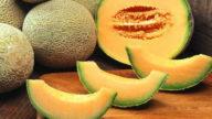Pelle del viso idratata con il melone