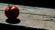 Strategie per muoverti di più: usa la tecnica del pomodoro